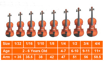 The String Instruments | St George Players